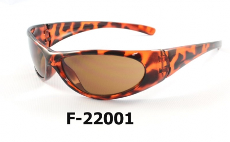 F-22001 Safety Sunglasses