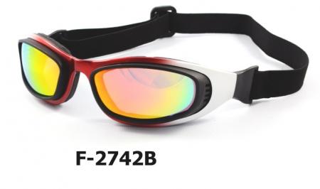 F-2742B  Bike goggle