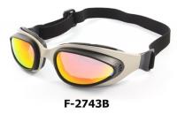 F-2743B Bike goggle